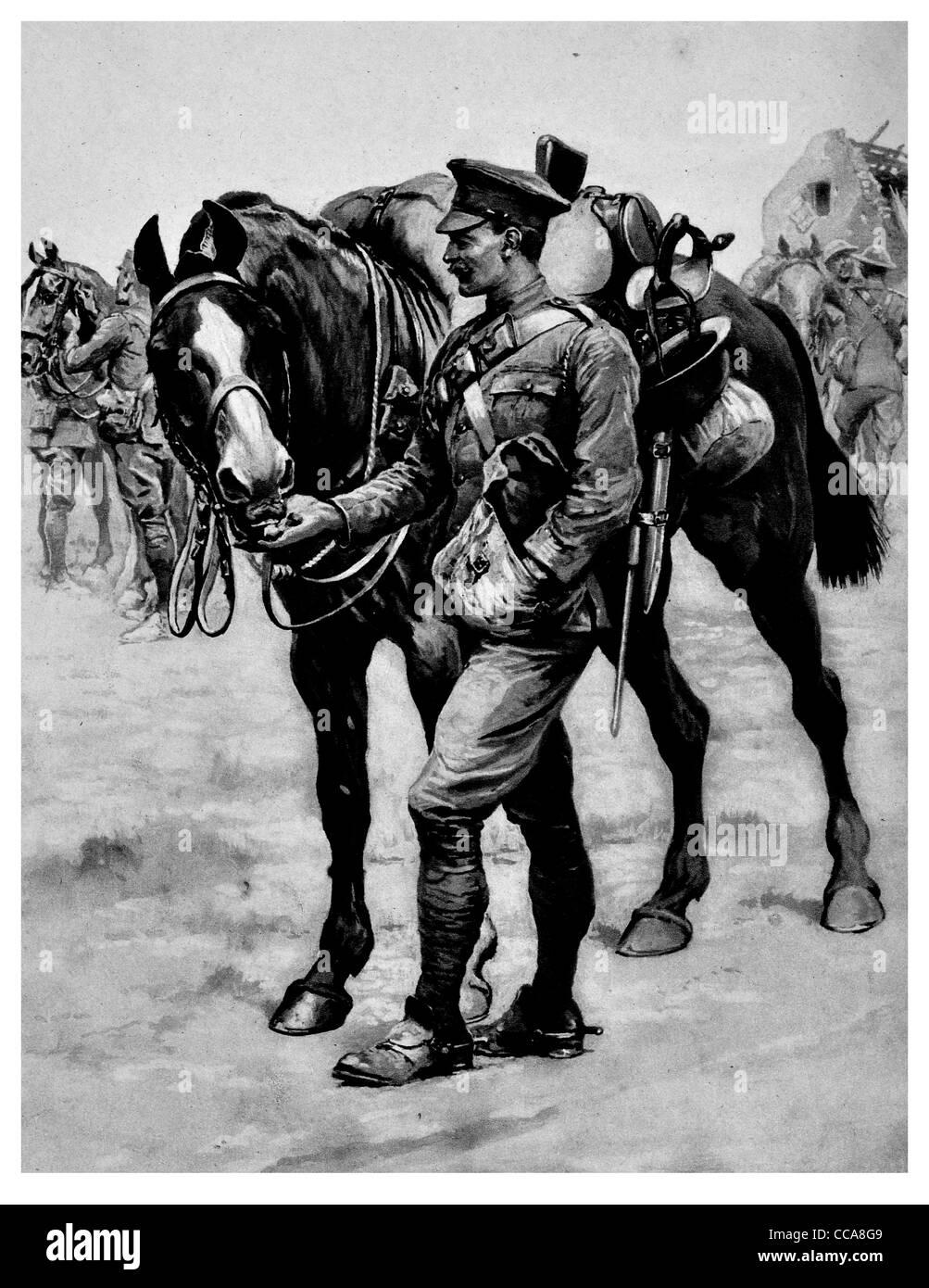 1916 Soldat gemeinsame Weihnachts-Box Pferd treuer Begleiter Fahrer ...