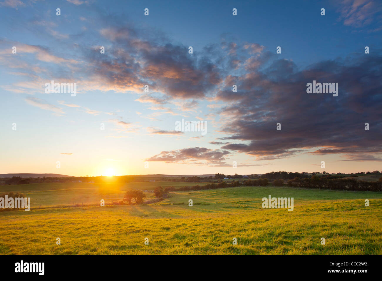 Wiese Sonnenuntergang, County Mayo, Irland. Stockbild