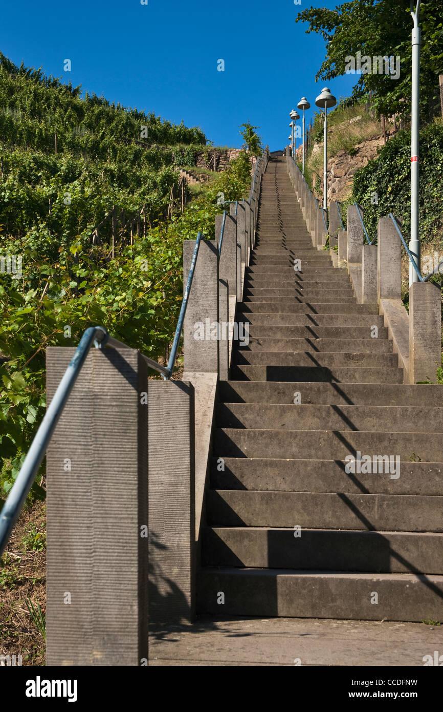 Top Spitz Haus Treppe mit 390 Stufen bauen von 1747-1750, Radebeul bei XA33