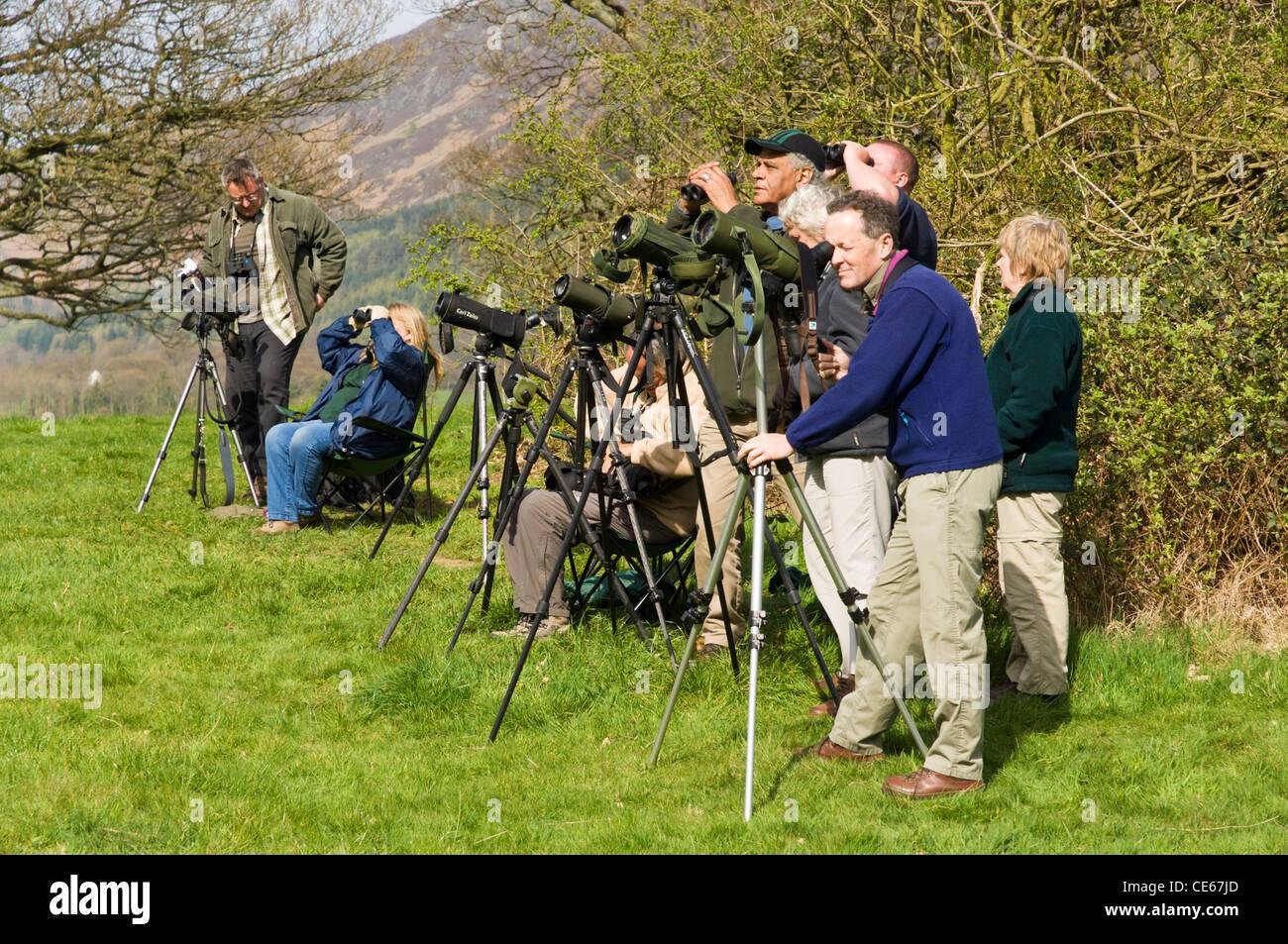Gruppe von ornithologen twitchers vogelbeobachtung durch spektive