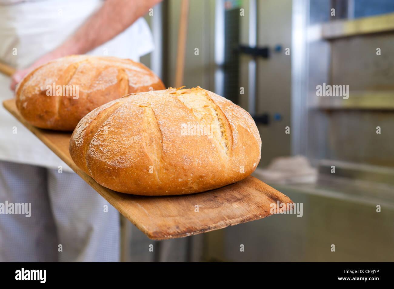 Männliche Bäcker backen frisches Brot in der Backstube Stockbild