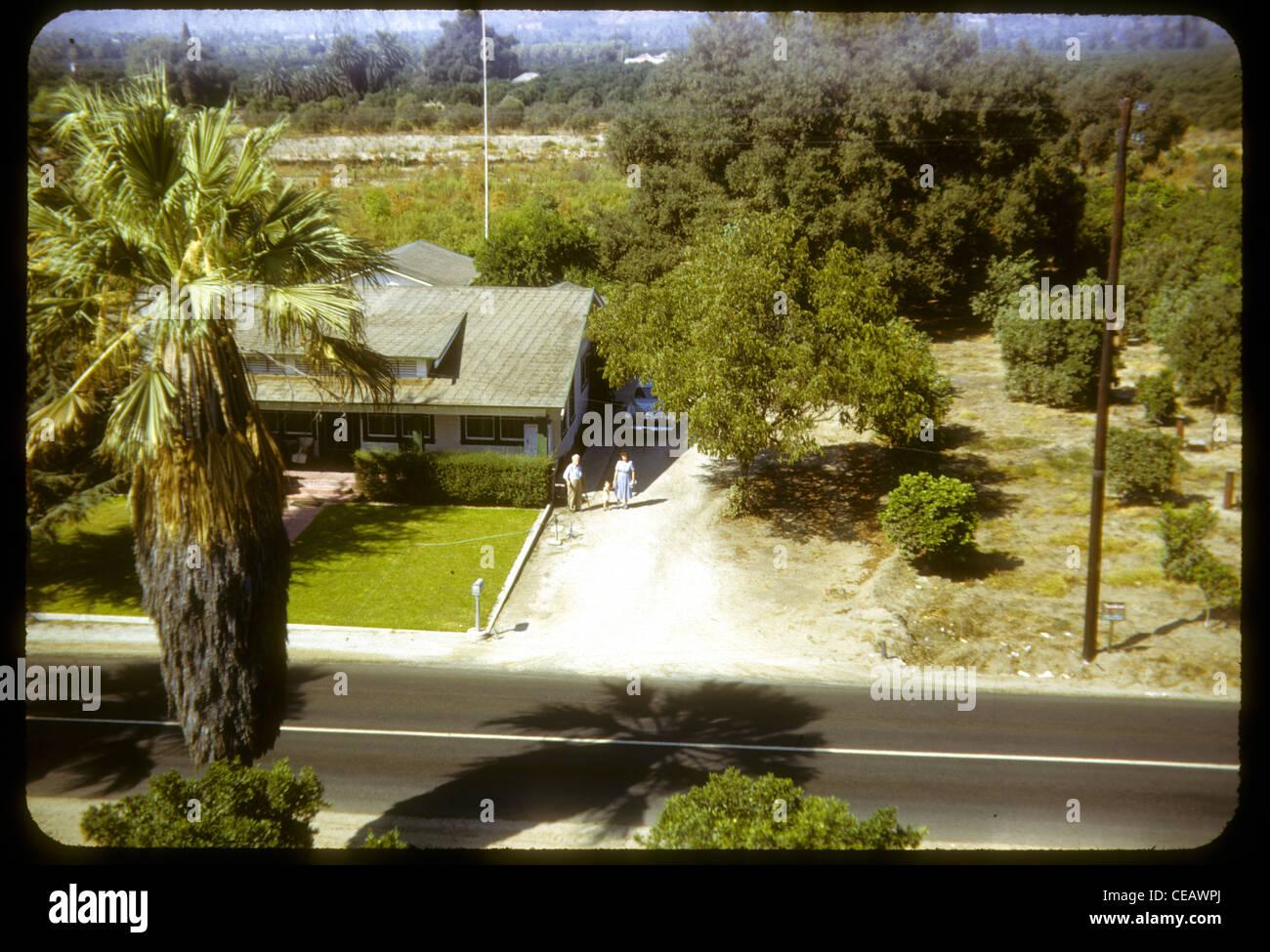 Bauernhof Haus Covina Kalifornien 1950er Jahre Los Angeles Azuza palm Tree Landwirtschaft unterentwickelten ländlichen Stockbild