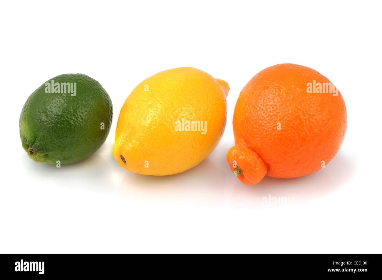 Frische Bio Limone, Zitrone und Tangelo in einer Linie auf weißem Hintergrund Stockbild