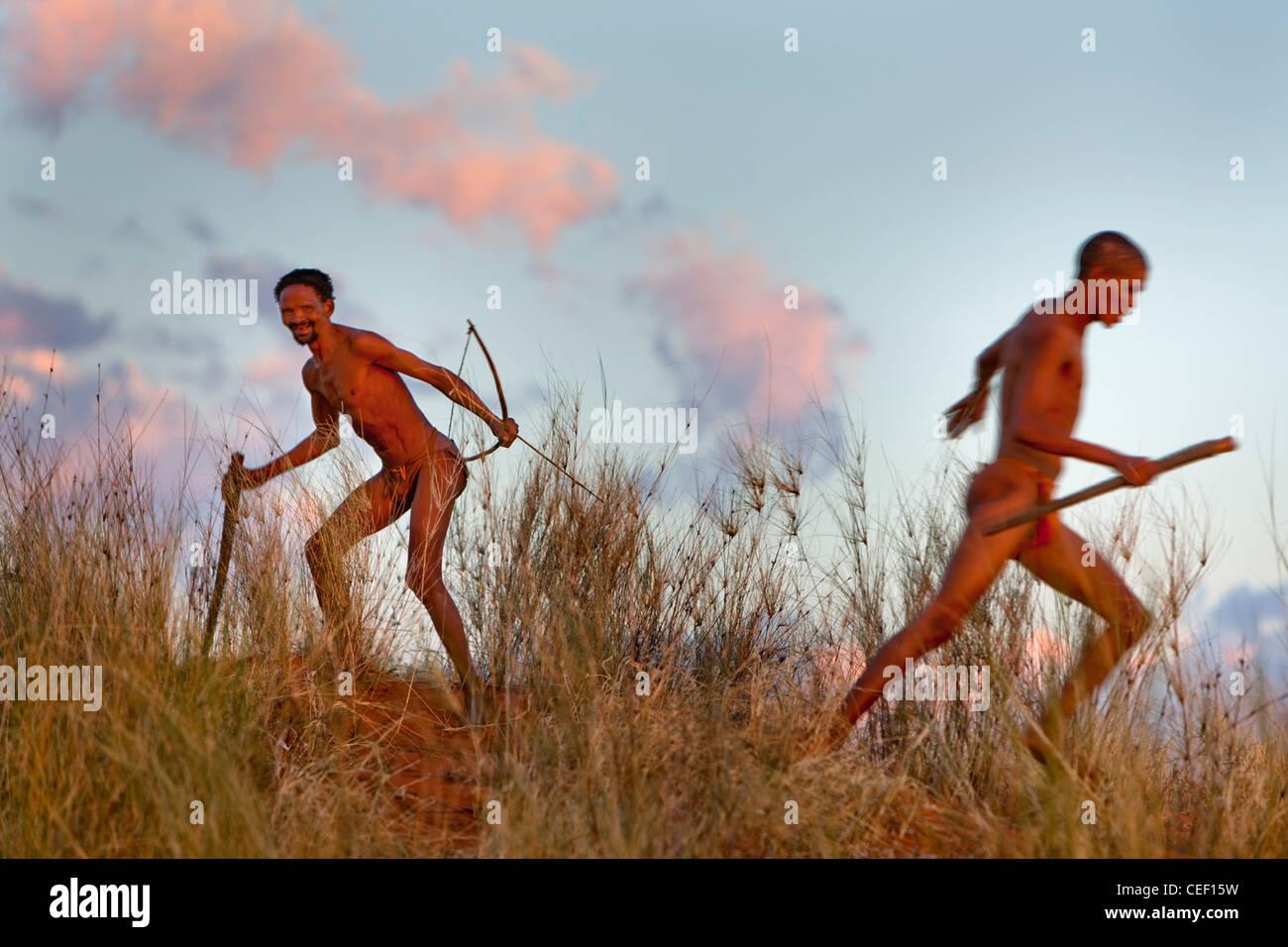 Kalahari Buschmänner jagen Stockbild