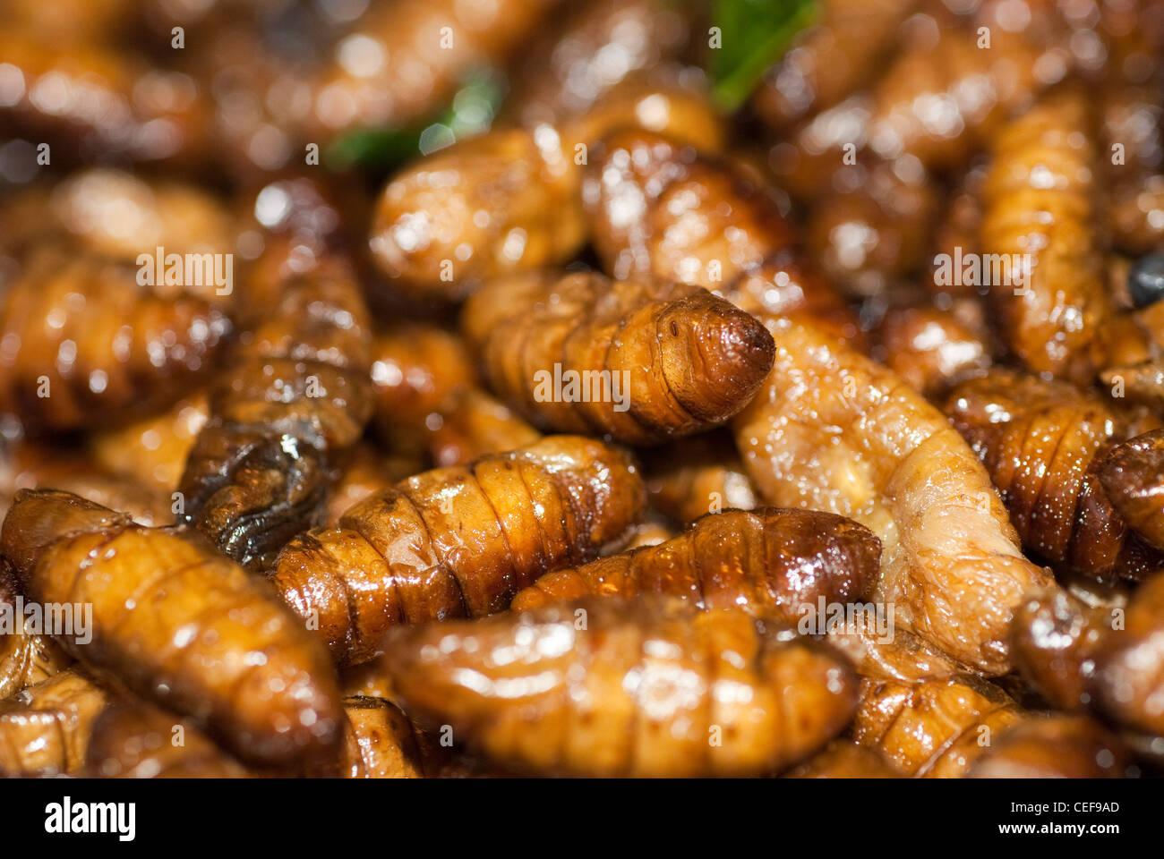 interessante insekten essen von einem lokalen markt in phuket thailand stockfoto bild 43362549. Black Bedroom Furniture Sets. Home Design Ideas