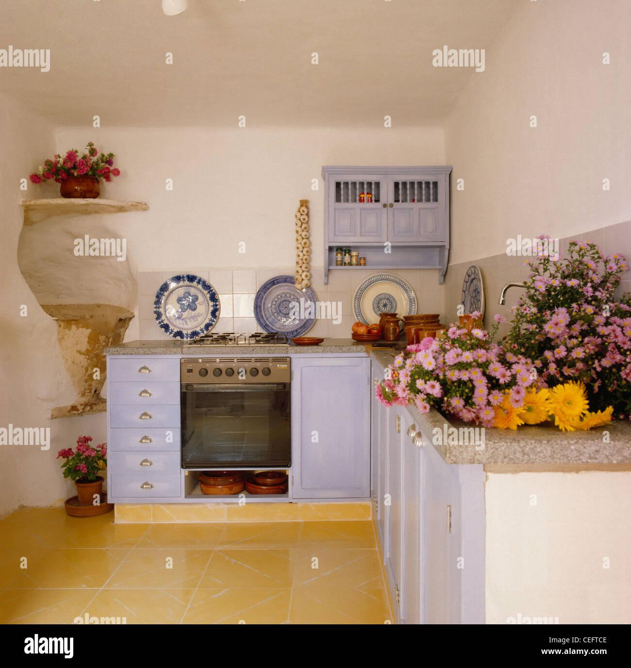 Rosa Gänseblümchen auf Arbeitsplatte kleine mallorquinische Küche ...