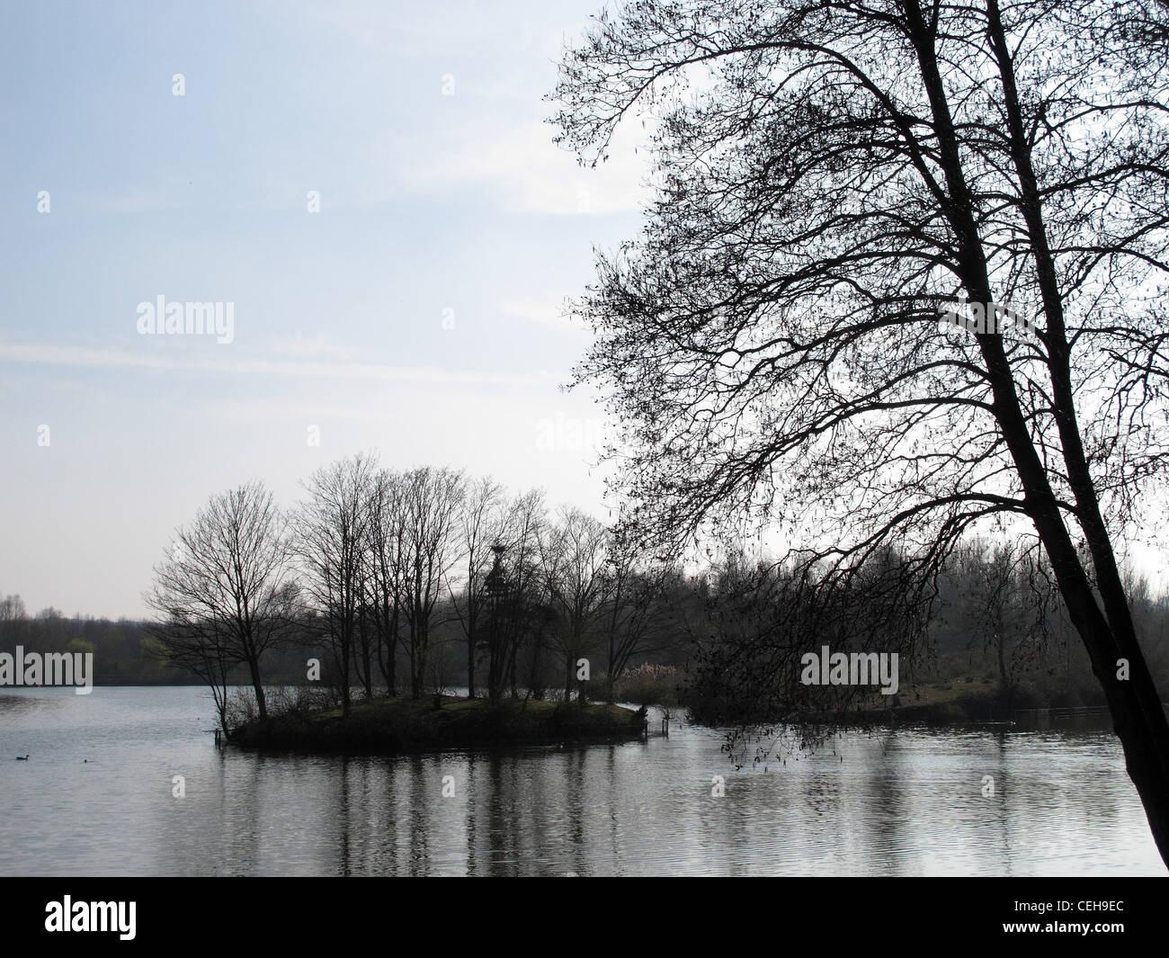 Winter-Szene auf Arrow Valley Lake, Redditch, krassen Bäumen vor blauem Himmel Stockbild