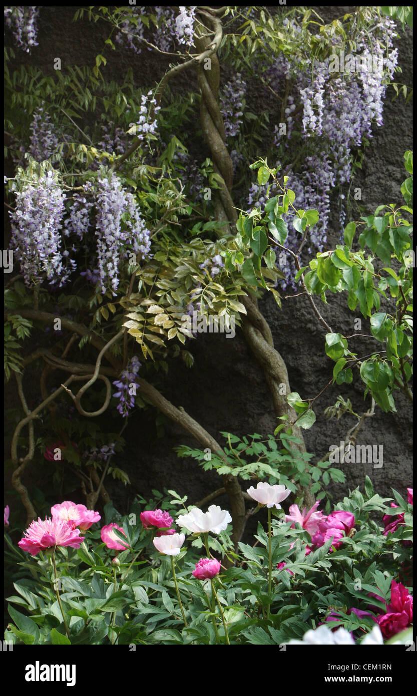 Ich Träume Ich Suche Meine Garten Designed Von Shao Fan Chelsea