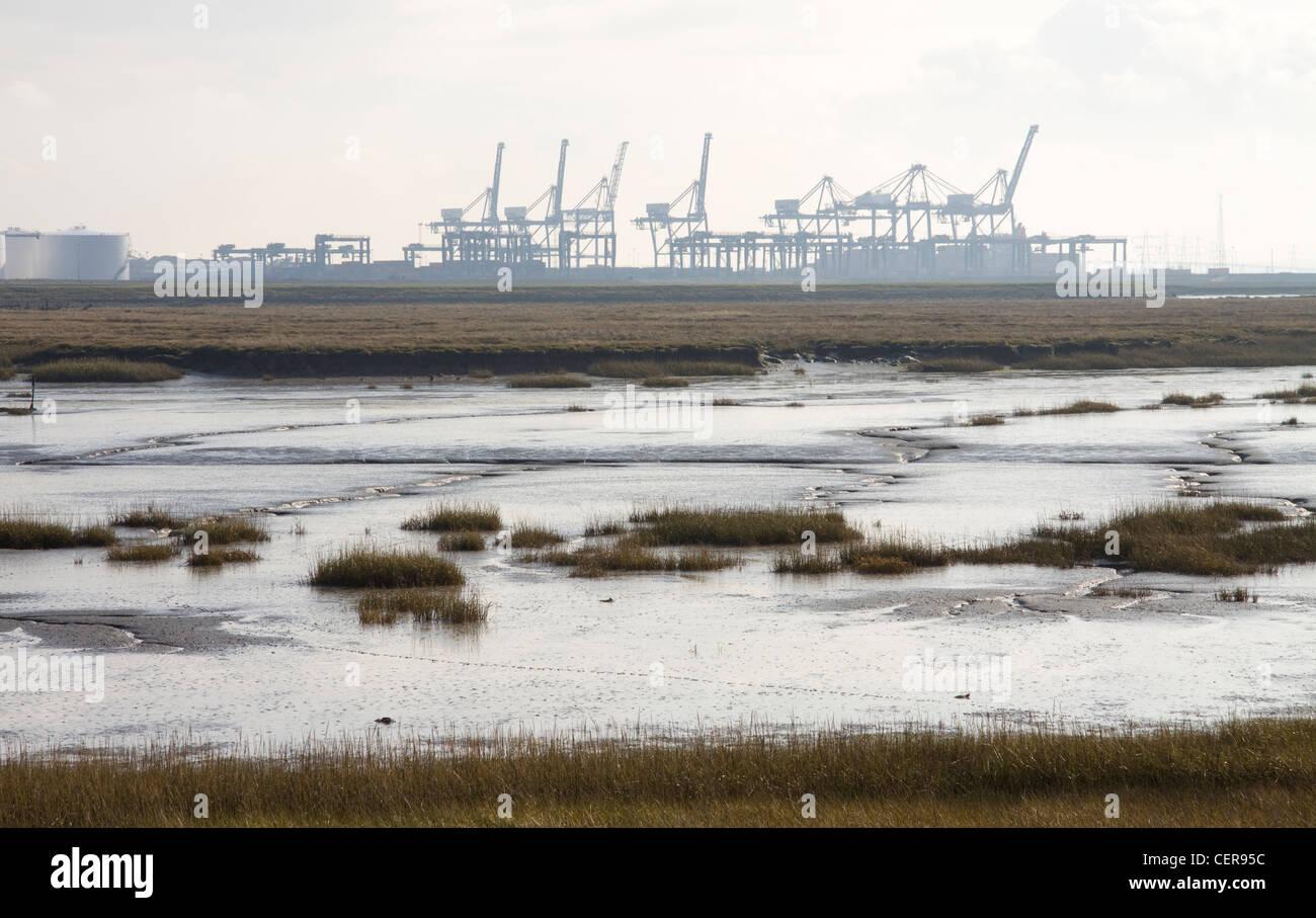 Blick über Marschland auf der Isle of Grain auf die Kräne der London Thamesport, einem der verkehrsreichsten Stockbild