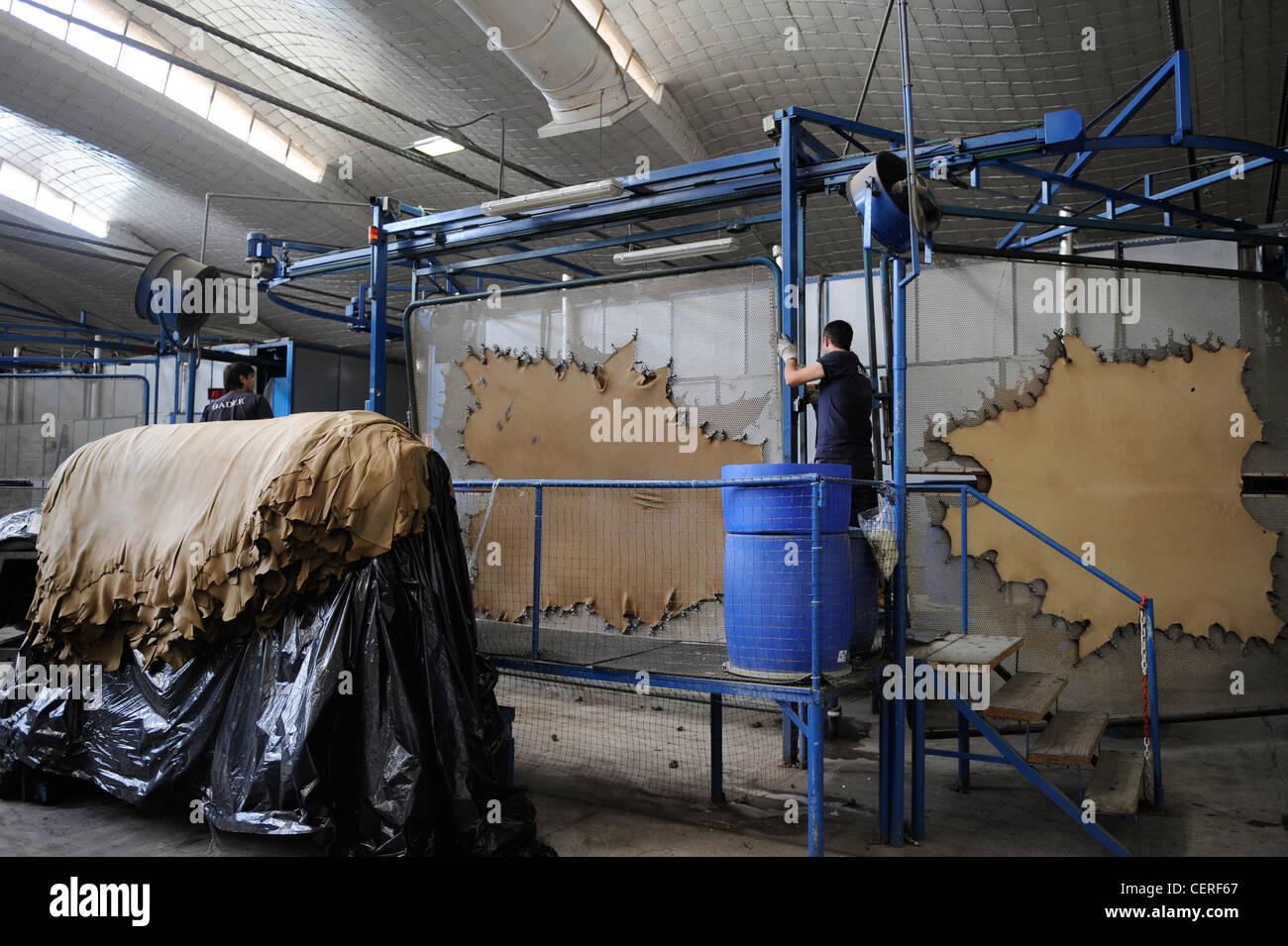 URUGUAY Gerberei Bader-Herstellung von Leder aus Kuhfell für Autositze von BMW Stockbild