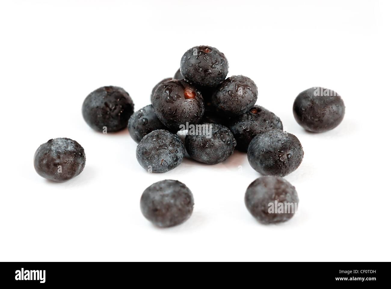 Acai, die kleine Superfrucht aus dem brasilianischen Amazonas, sehr reich an natürlich Nährstoffen und Stockbild