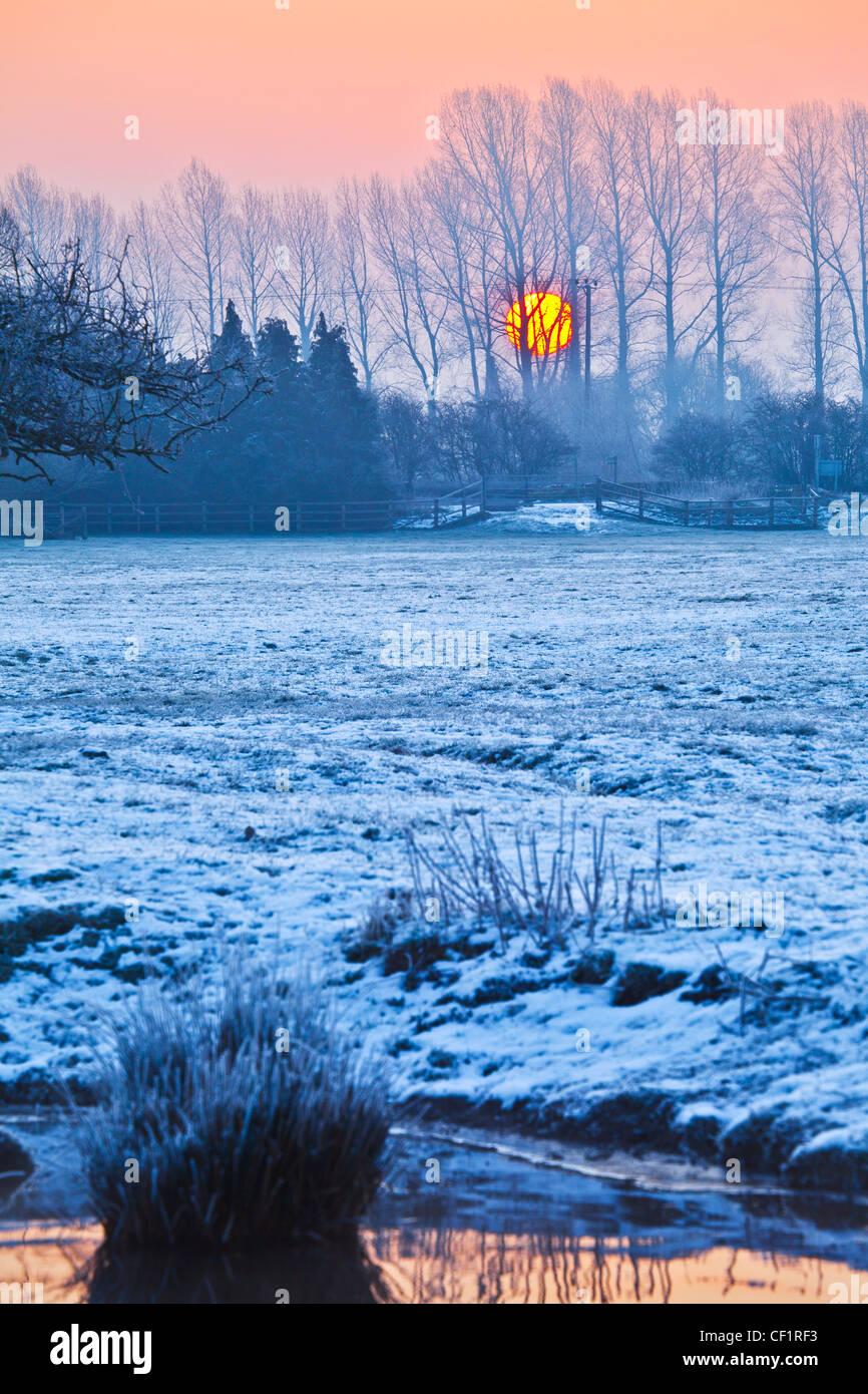 Sonnenaufgang hinter Baumreihe auf frostigen Cotswold Wintermorgen auf der Themse bei Lechlade, Gloucestershire, Stockbild