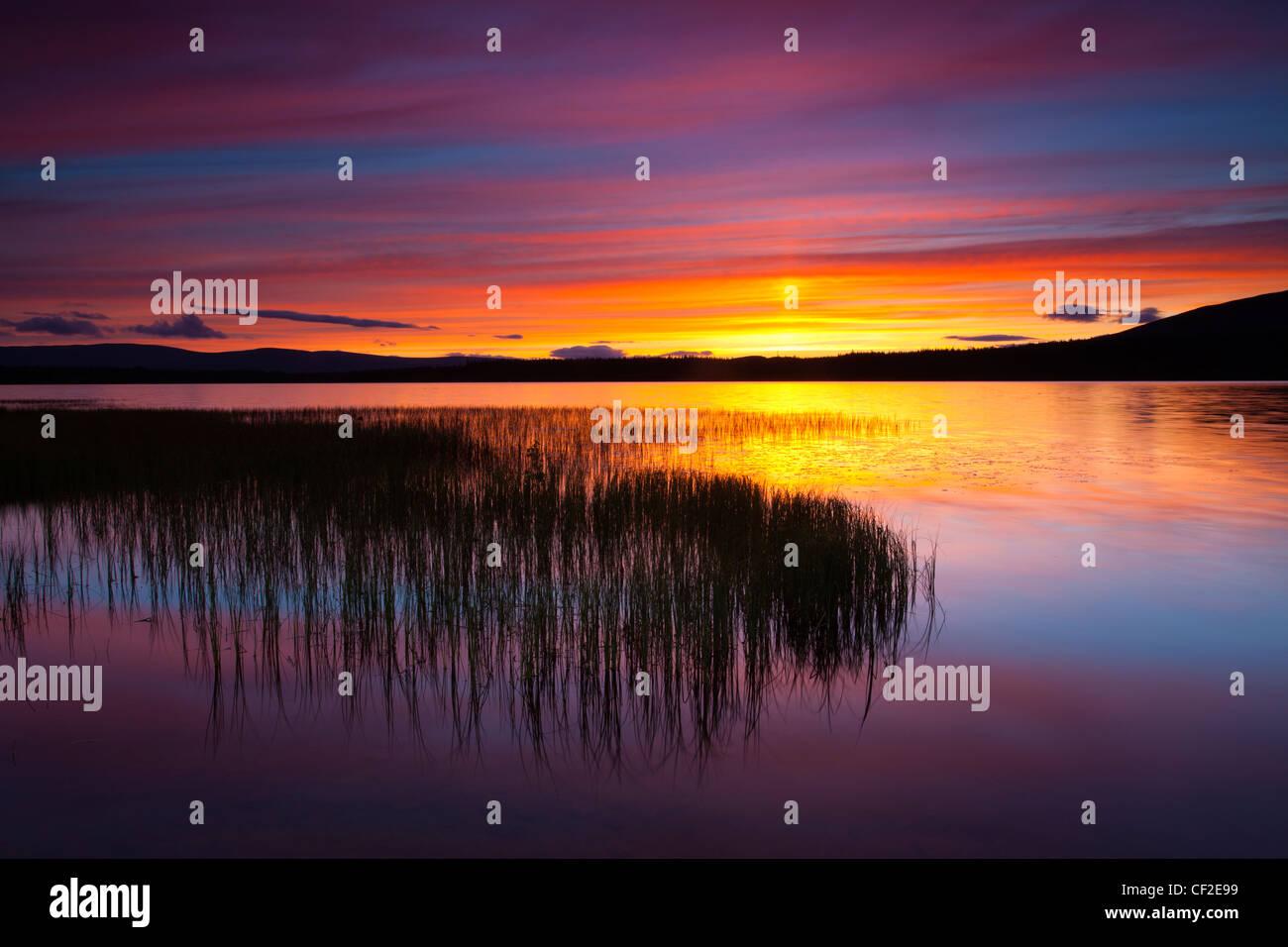 Sommer Sonnenuntergang über Loch Morlich in der Nähe von Aviemore in den Cairngorms National Park. Stockbild
