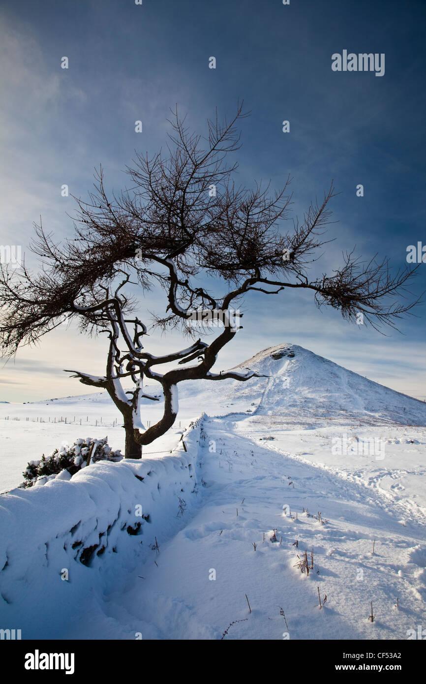 Schnee bedeckt, Nähe Topping, einem Hügel mit einer markanten kegelförmigen Spitze, die Form ist Stockbild