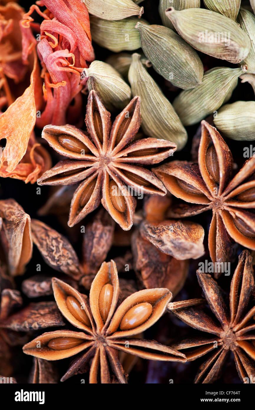 Indische Küche Gewürze Muster. Flachbild Fotografie von oben legen. Stockfoto