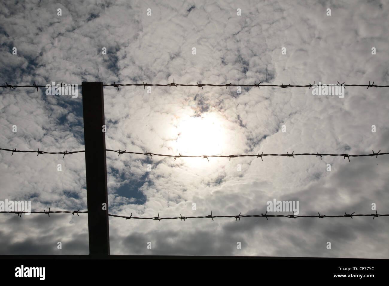 Szene Mit Stacheldrahtzaun in Diffusem Licht, Szene mit diffusem Licht und Stacheldrahtzaun Stockbild