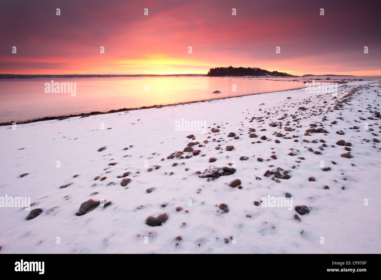 Wintermorgen am Larkollen in Rygge, Østfold Fylke, Norwegen. Stockbild