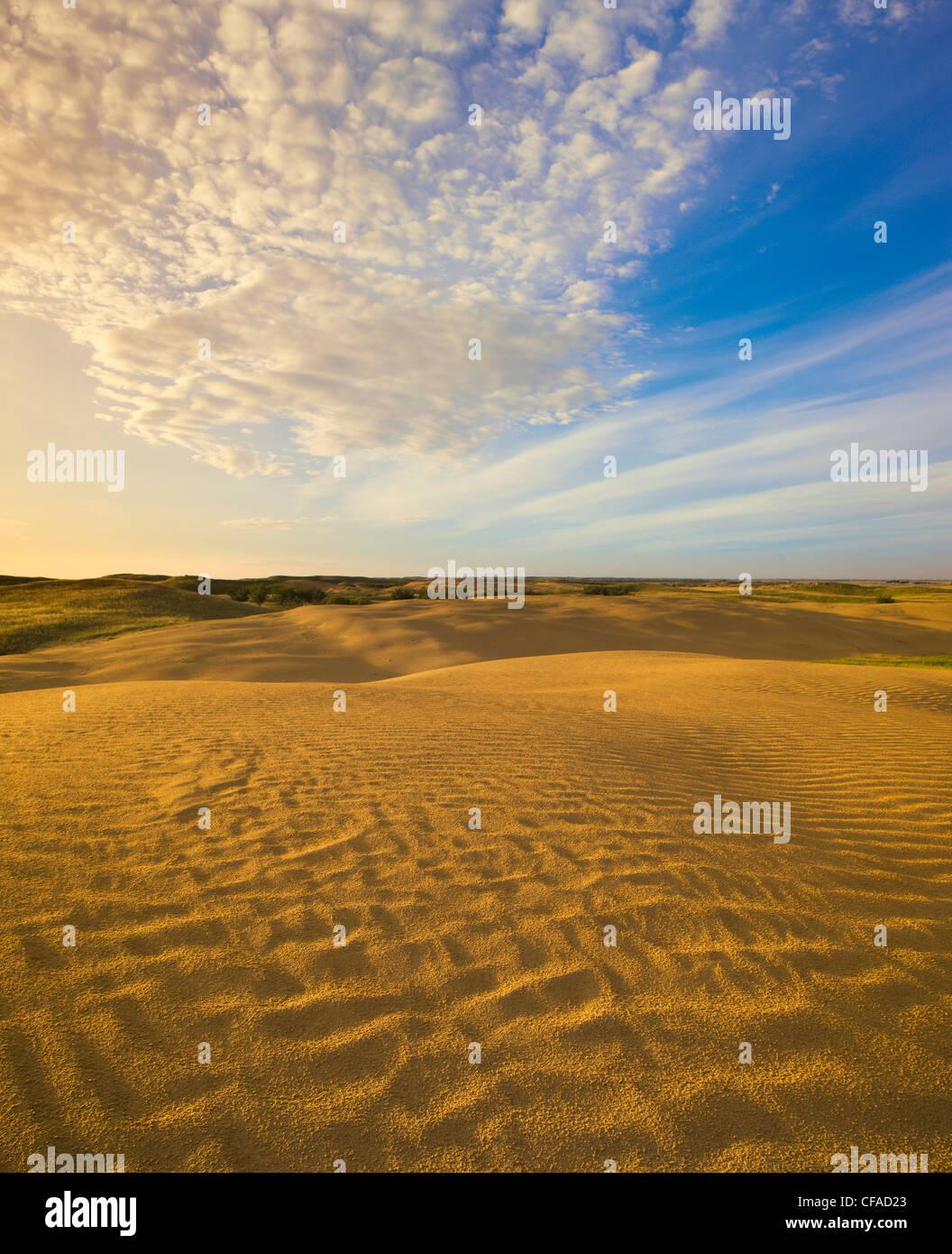 Detail der großen Sandhügel in der Nähe von Leader, Saskatchewan, Kanada. Stockbild