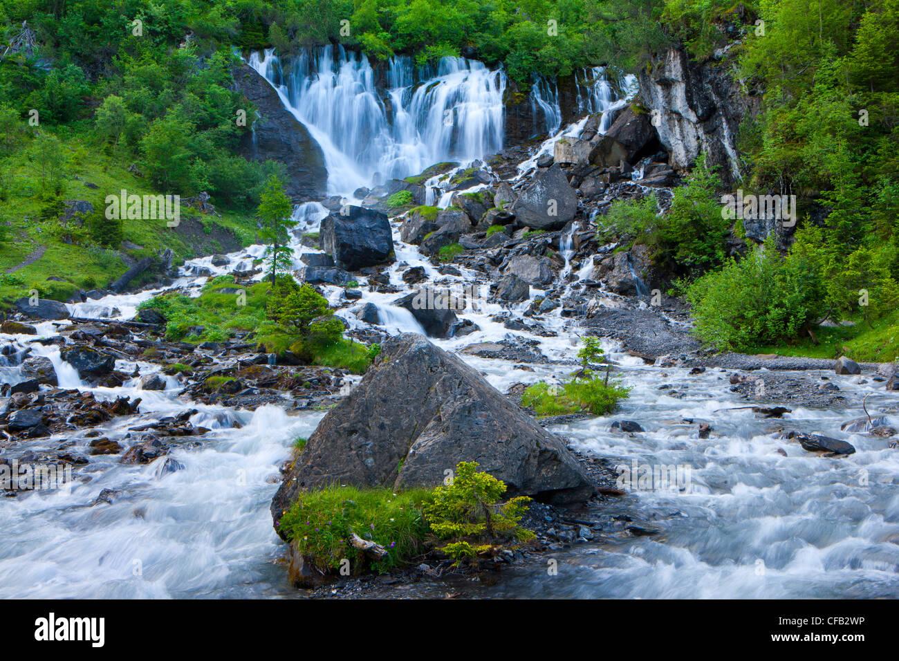Sieben Brunnen, Sieben Brunnen, Schweiz, Kanton Bern, Berner Oberland, Simmental, Holz, Wald, Frühling, Quelle, Stockbild