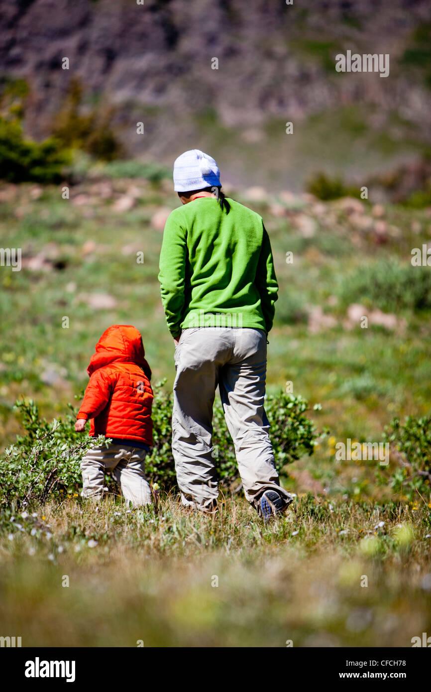 eine Frau geht mit ihrem 2-jährigen Sohn durch eine Almwiese. Sie sind auf der Continental Divide Trail (CCT, Stockbild