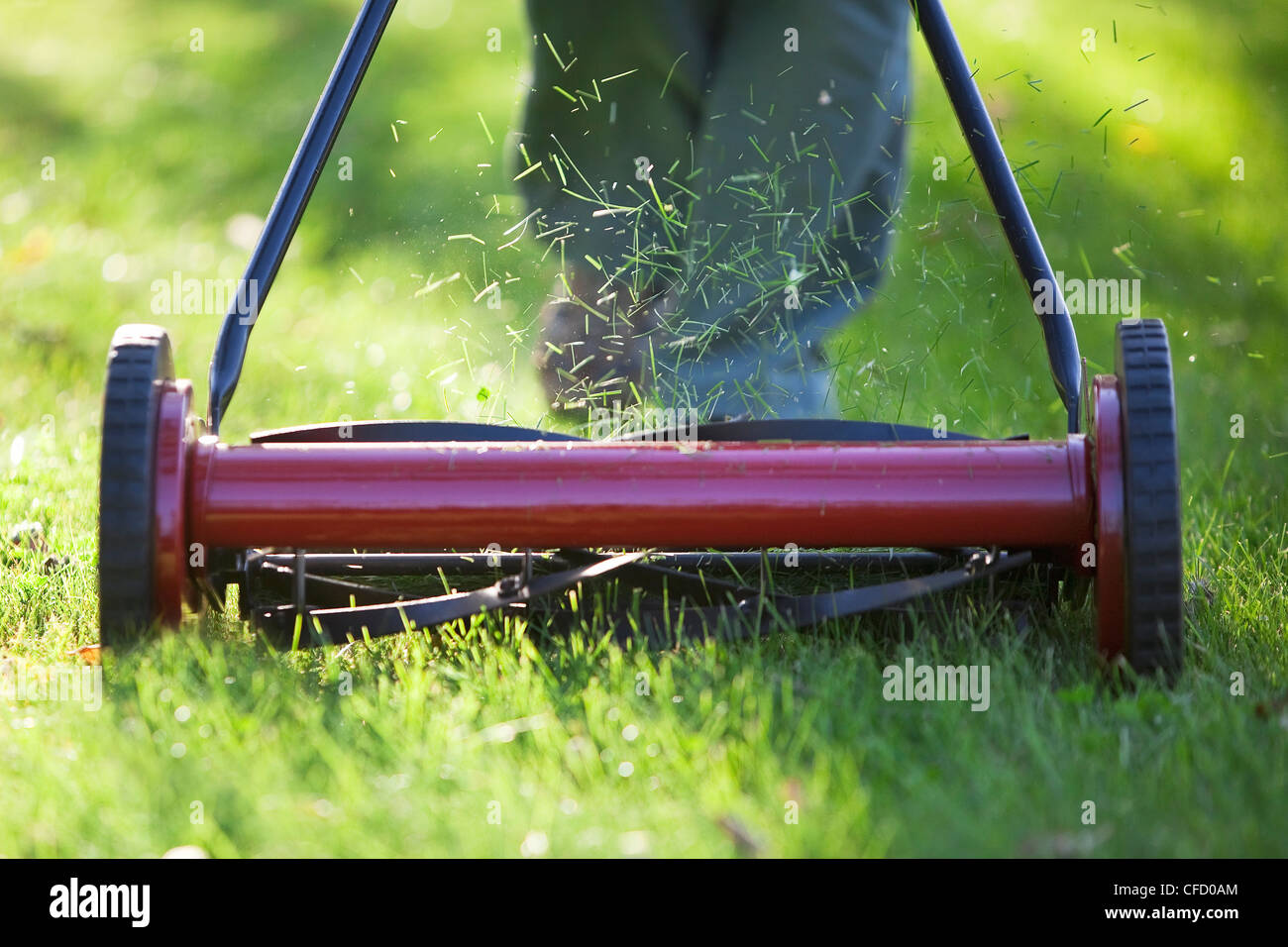 Frau mit umweltfreundliche Rasenmäher Rasen zu mähen. Winnipeg, Manitoba, Kanada. Stockbild