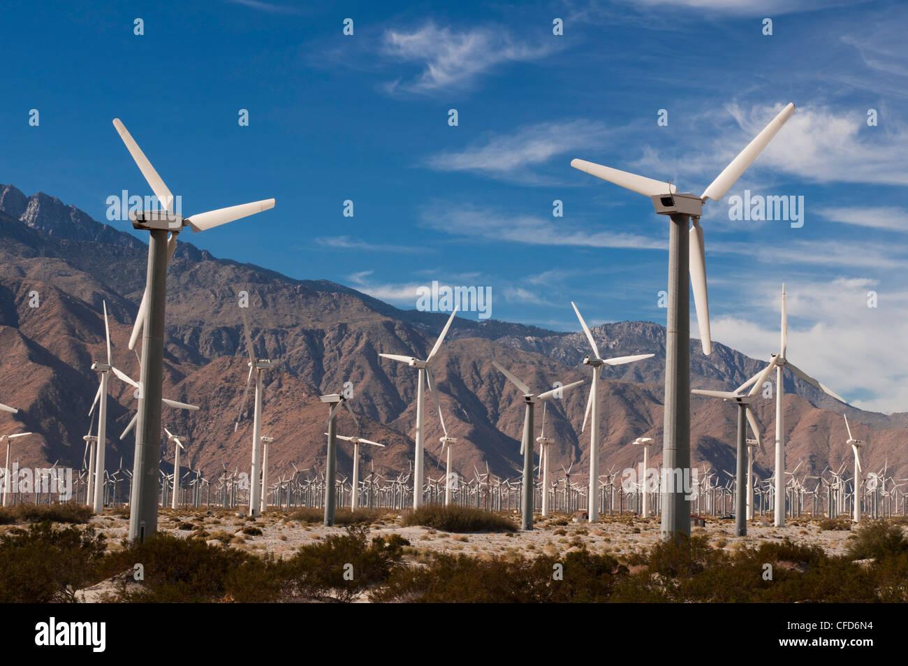Windpark, Palm Springs, Kalifornien, Vereinigte Staaten von Amerika, Stockbild