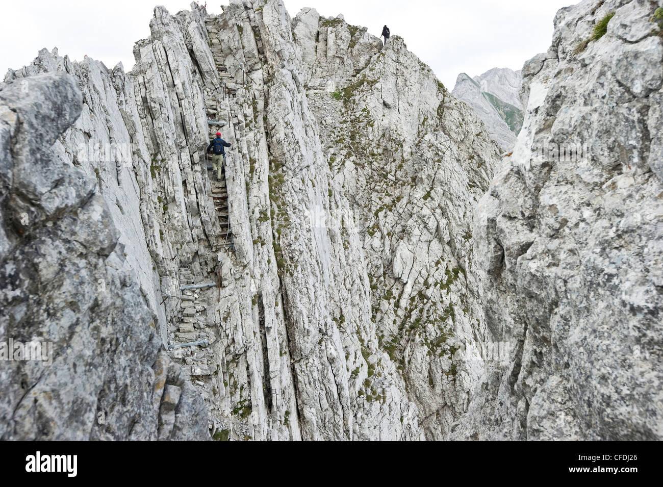 Menschen am Klettersteig, Alpsteingebirge, Säntis, Appenzeller Land, Schweiz, Europa Stockbild