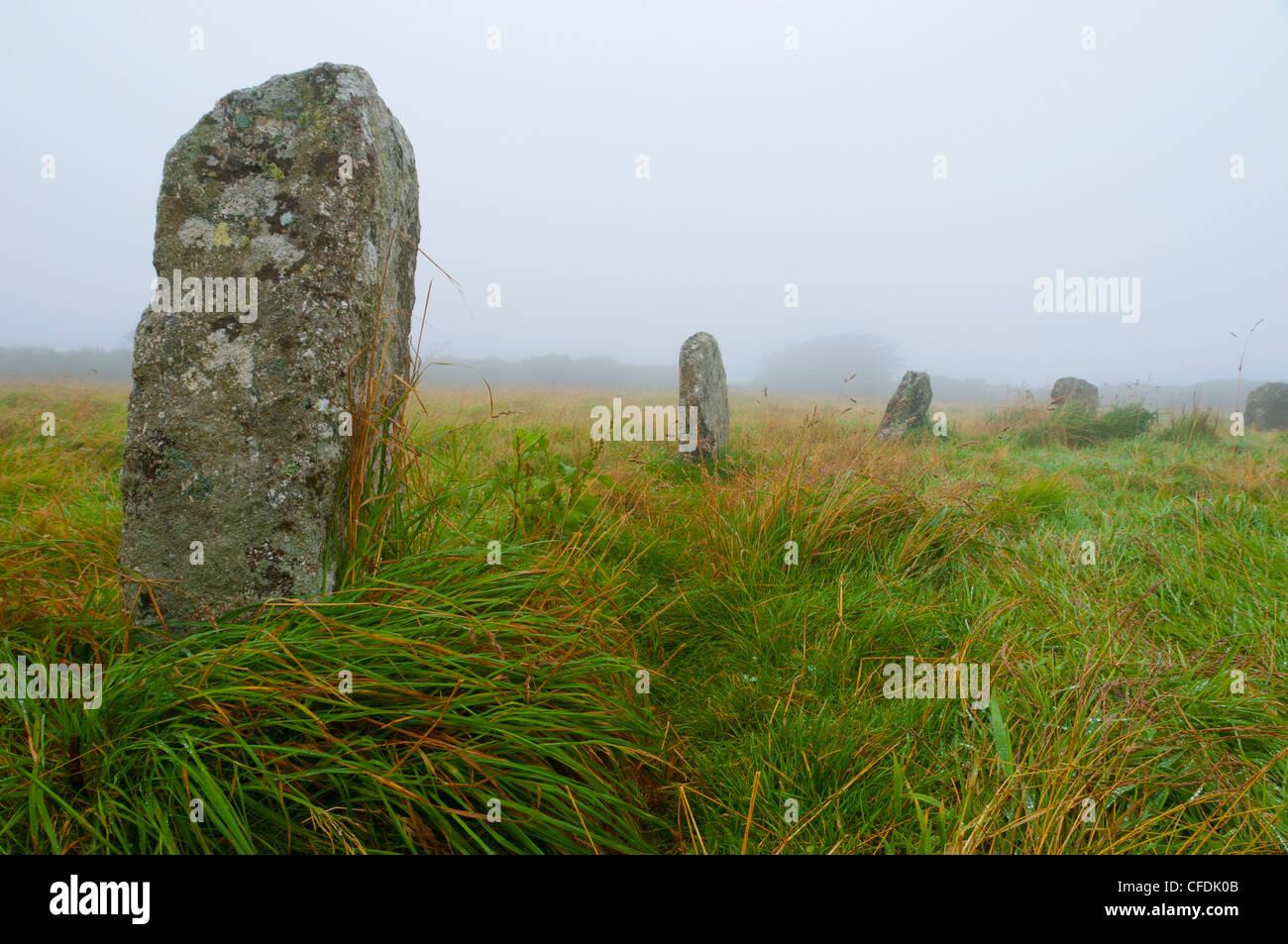 Merry Maidens Stein Kreis, Cornwall, England, Vereinigtes Königreich, Europa Stockbild