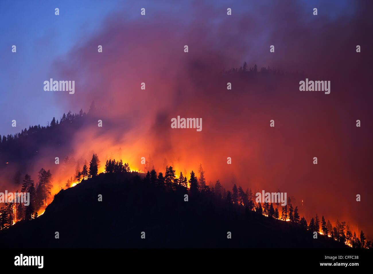 Ein Forrest Feuer brennt die Seite eines Berges in Montana. Stockbild