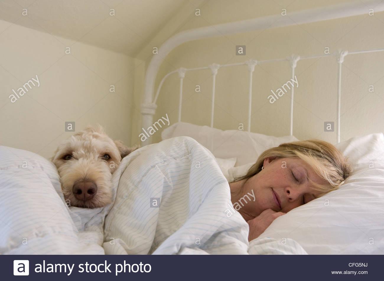 Eine Frau liegt im Bett mit ihrem Hund in ihrem Haus in Lincoln, Nebraska. Stockbild