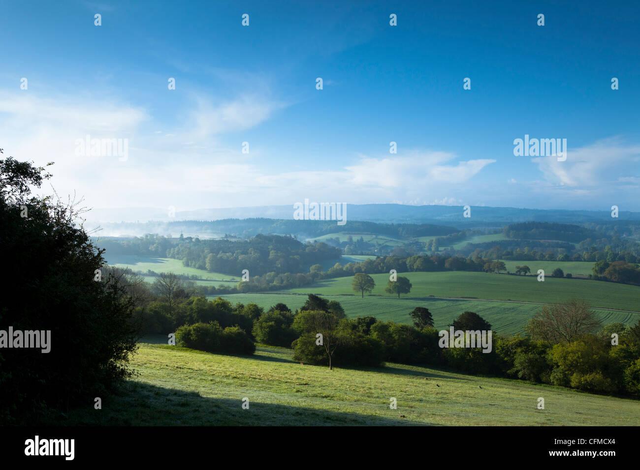 Newlands Eckansicht, in der Nähe von Guilford, Surrey Hills, North Downs, Surrrey, England, Vereinigtes Königreich, Stockbild