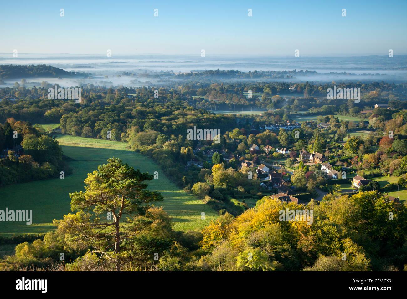Südlich von Colley Hügel an einem nebligen Herbstmorgen, Reigate, Surrey Hills, Surrey, England, Vereinigtes Stockbild
