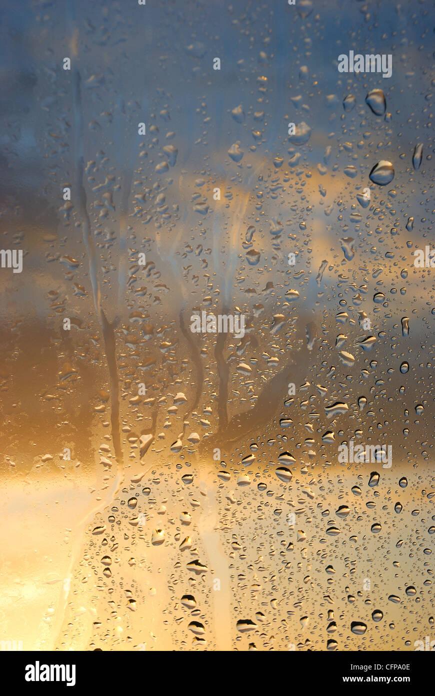 Kondenswasser am Fenster Stockbild