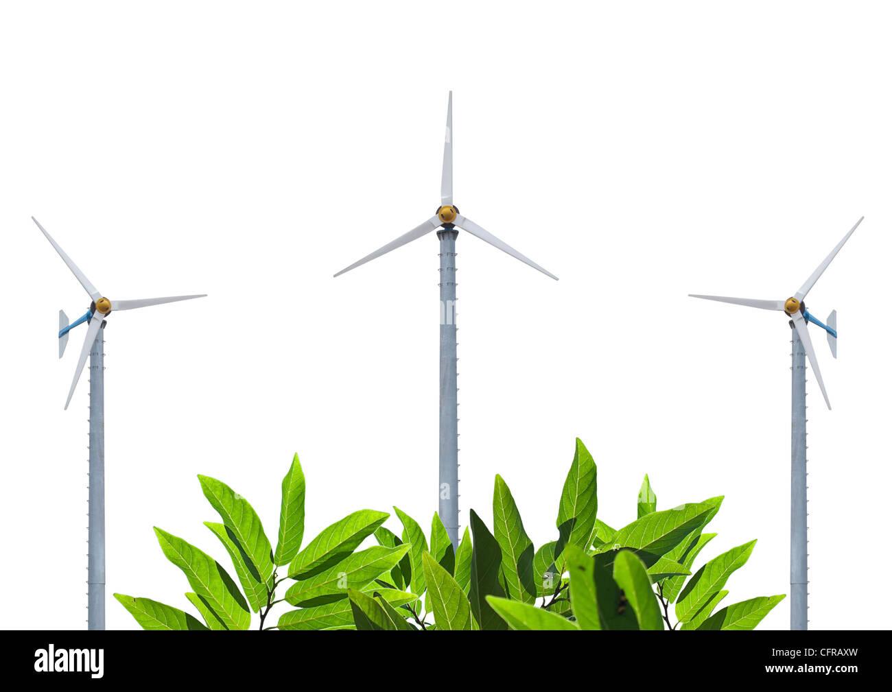 Windmühlen mit schönen grünen Blätter Stockbild