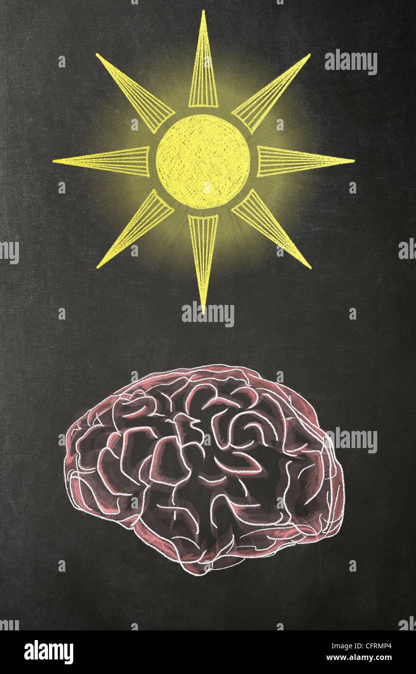 Abbildung in Chalk eines menschlichen Gehirns mit einer Sonne über es auf einer Tafel Stockbild