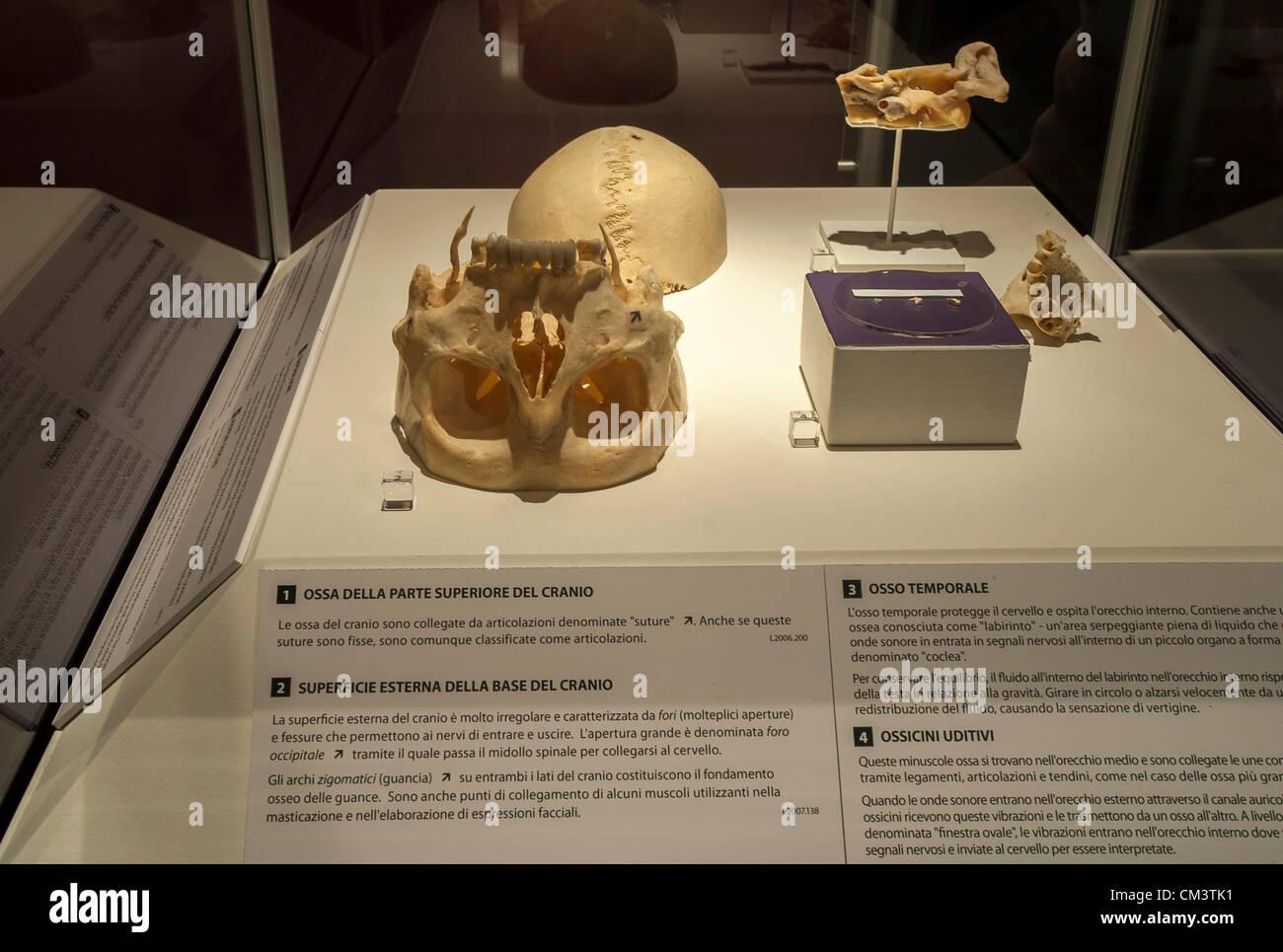 Italy Torino Palaisozaki Exhibition Human Stockfotos & Italy Torino ...