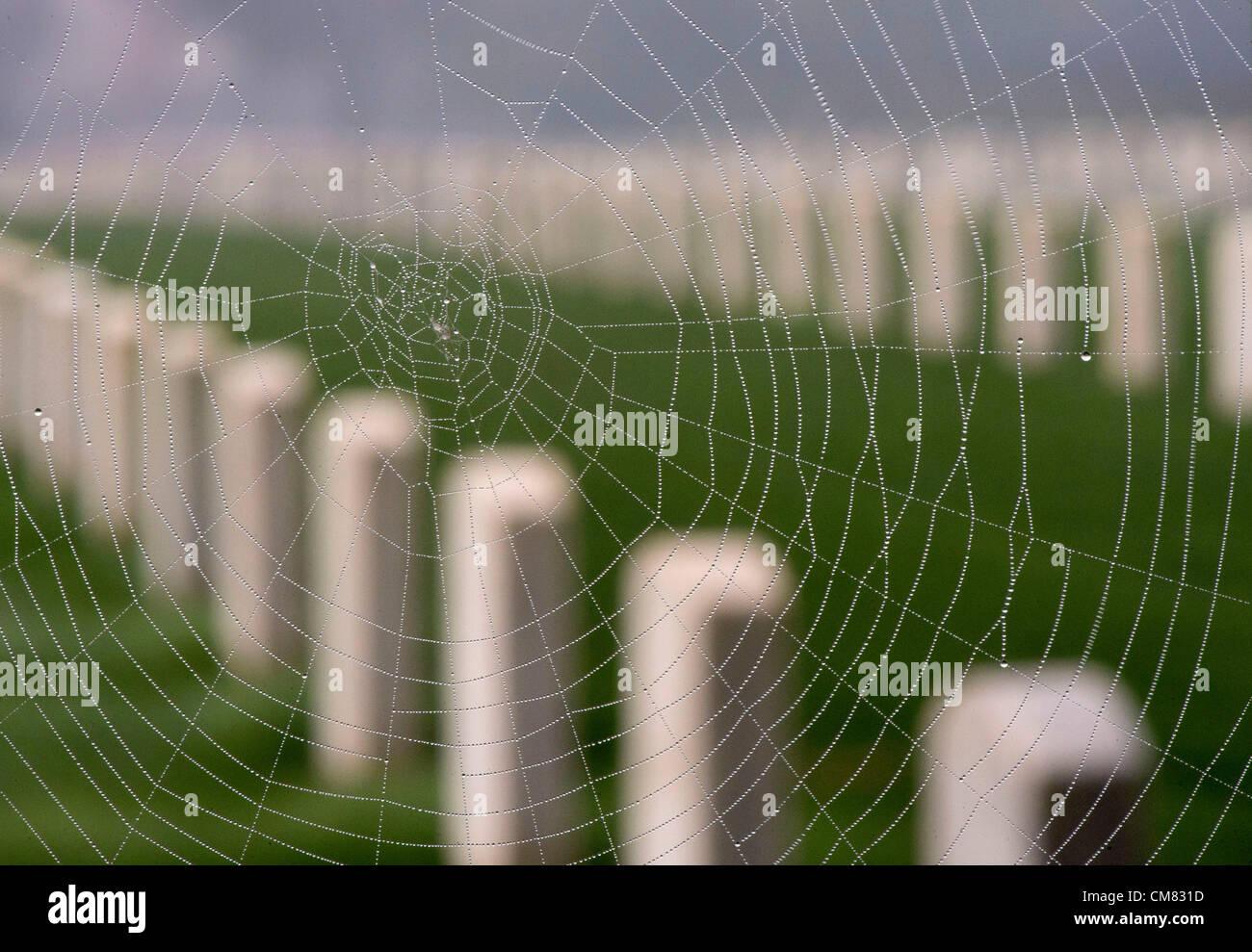25 Oktober 2012 Hangt Roseburg Oregon Usa Grabsteine Stehen