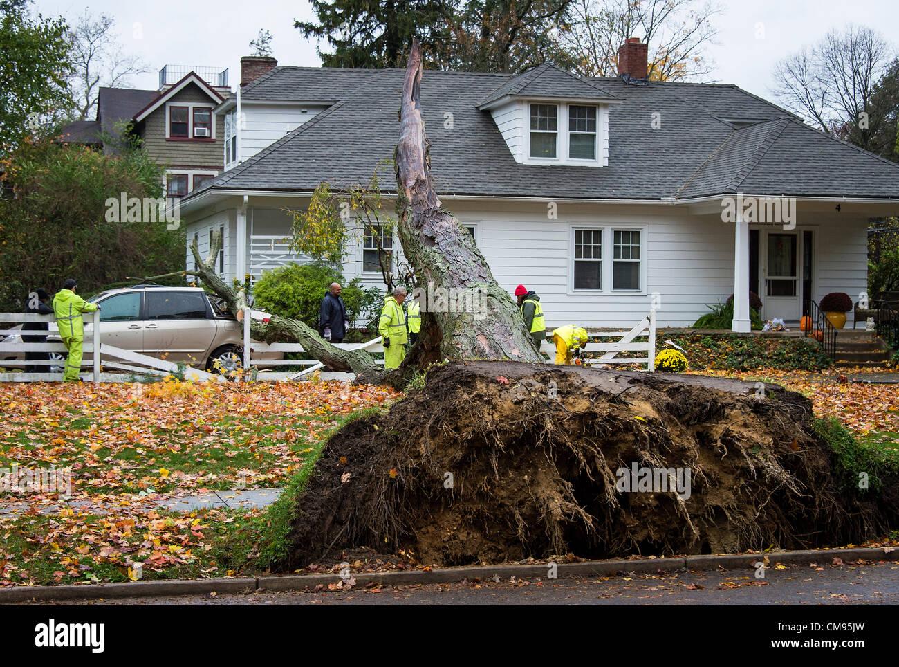 New Jersey, USA. 30. Oktober 2012. Lokaler Crew bewertet Baum und Eigentum Schaden im Zuge der Hurrikan Sandy, Moorestown, Stockbild