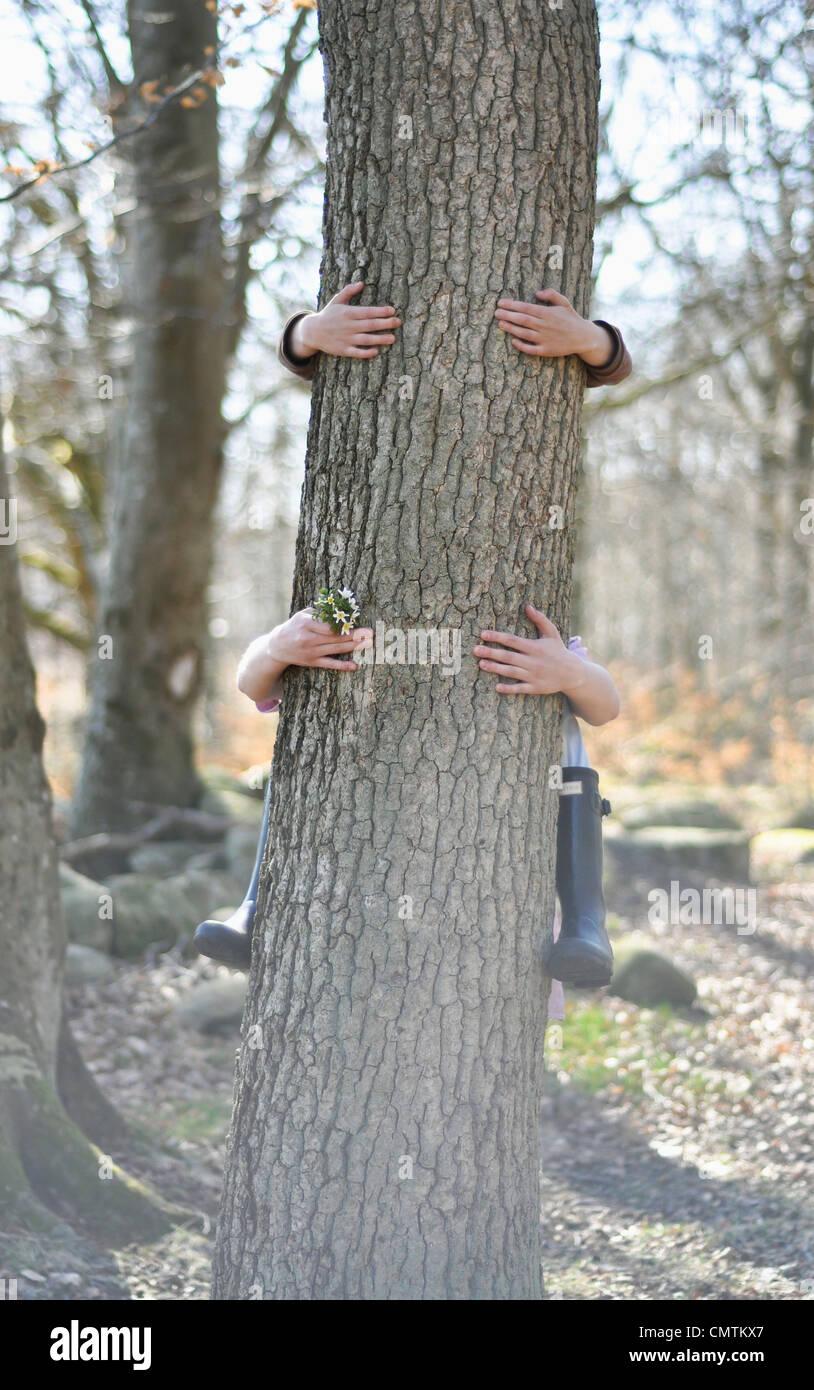 Menschliche Hand umarmt Baumstamm Stockbild