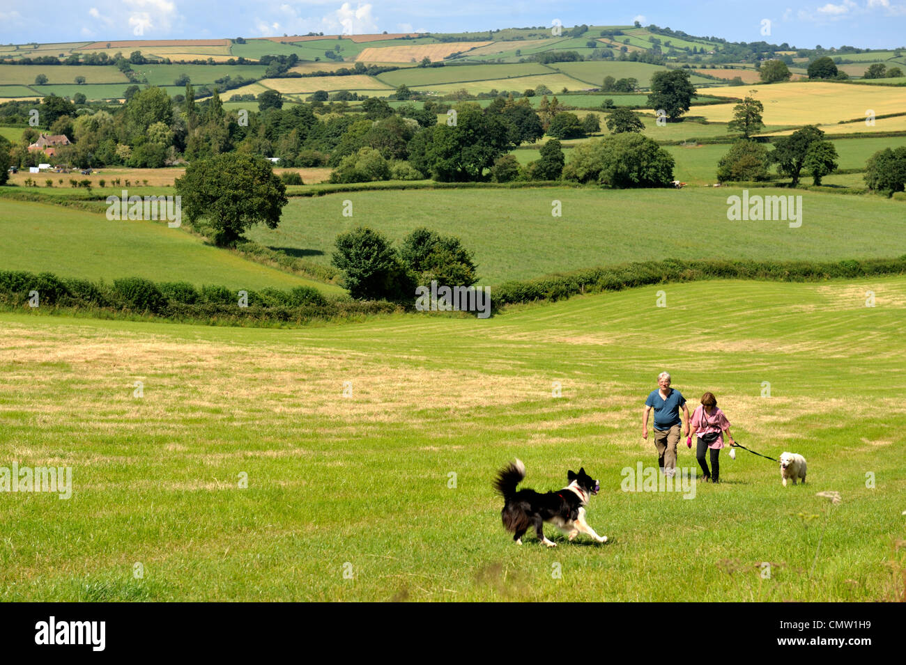 Chew Valley, North Somerset, UK, Landschaft Stockbild