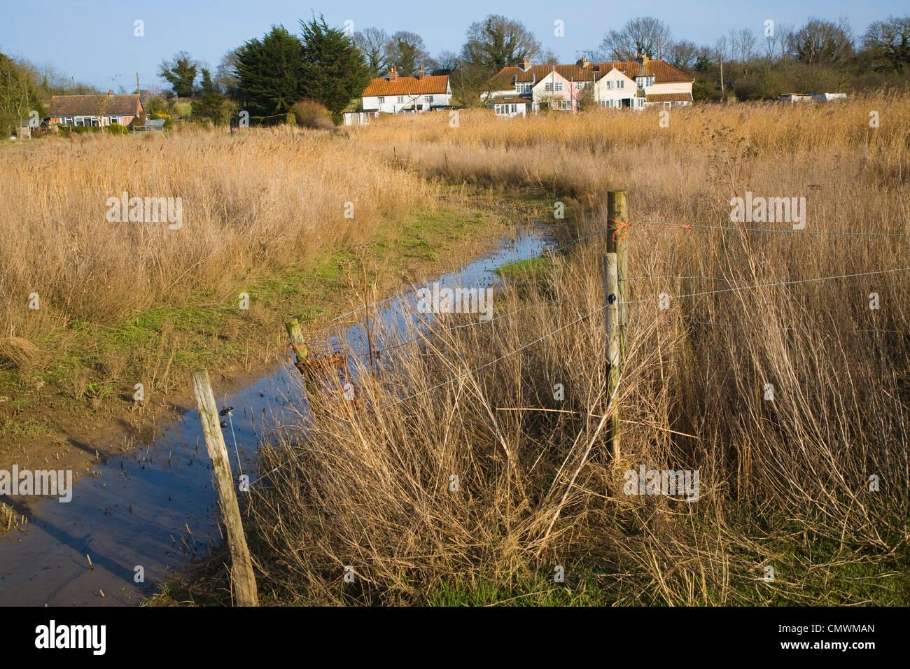 Blyhburgh Dorf gesehen durch Marschland Schilf, Suffolk, England Stockbild