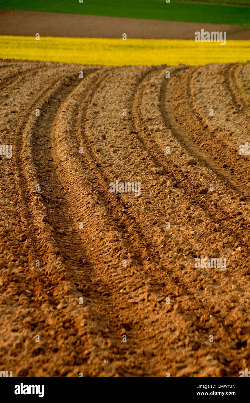 Furchen in ein gepflügtes Feld Stockfoto