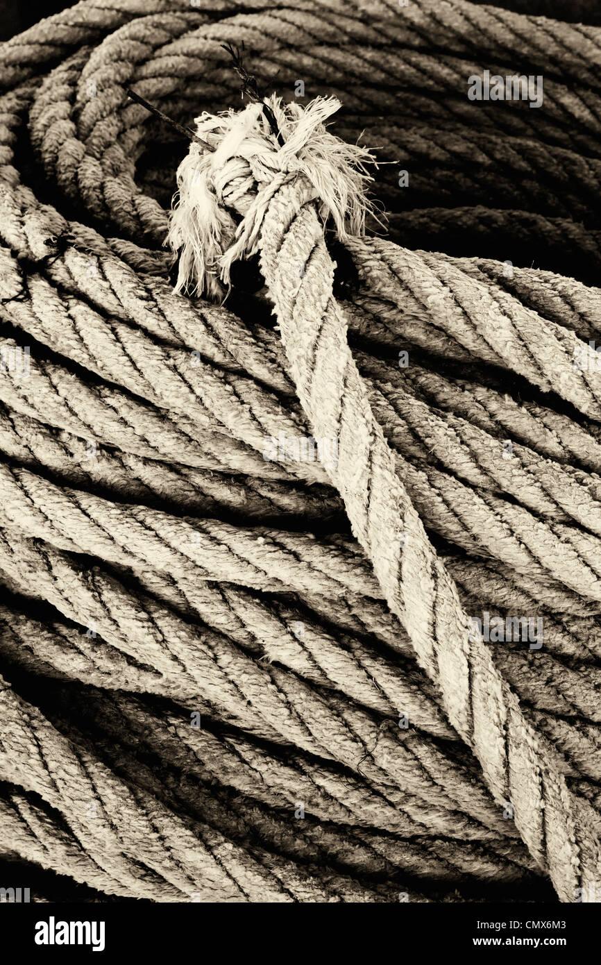 Spule Seil mit zerlumpten Ende. Stockbild