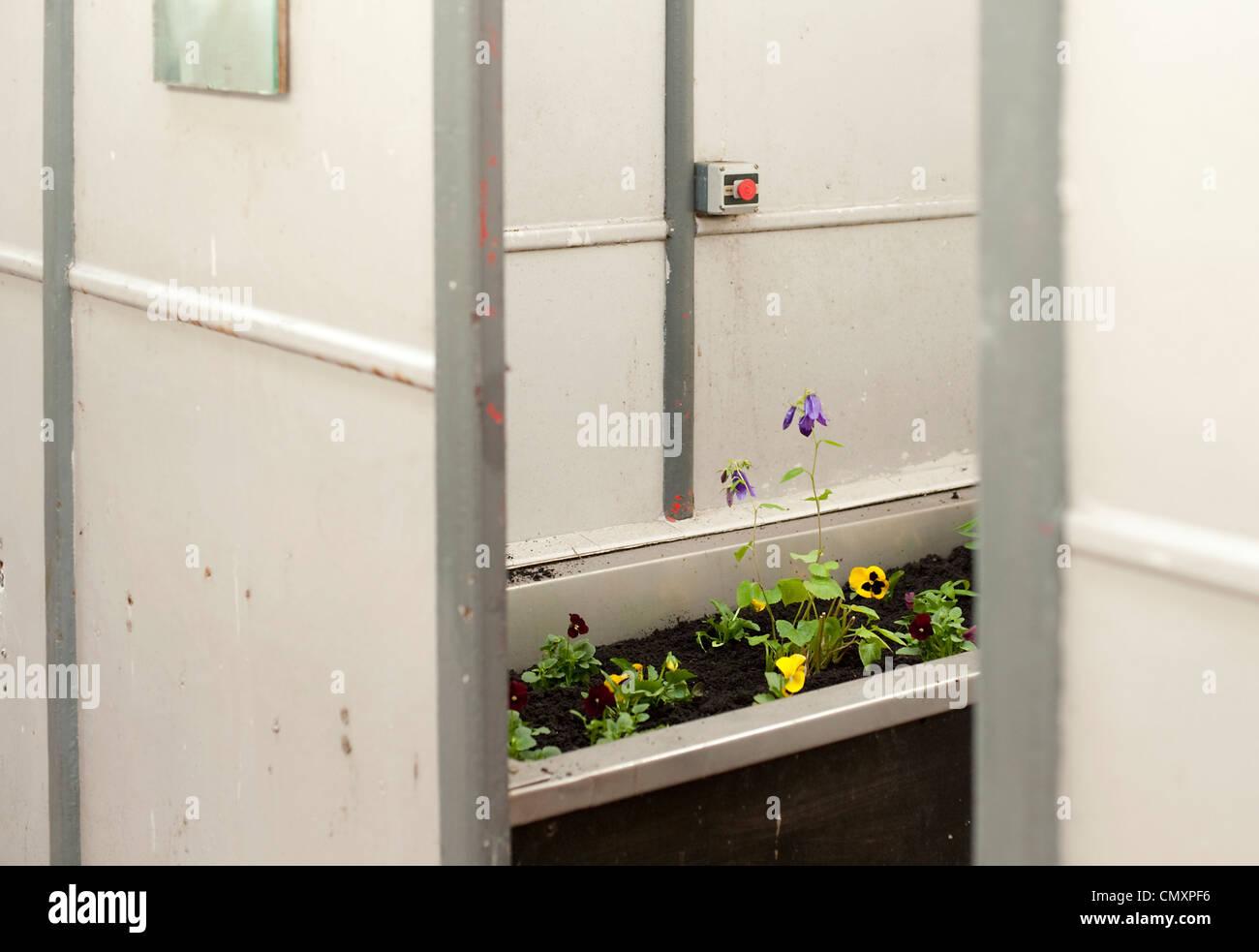 Fußbodenplatten Xp ~ Bath cubicle stockfotos & bath cubicle bilder alamy