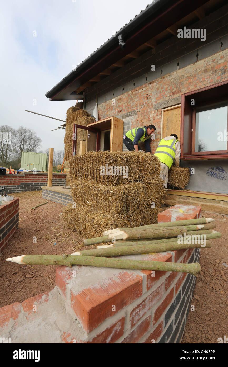 Bauherren, die mit Stroh für Wärmedämmung auf ein neues Öko-Gebäude Stockbild