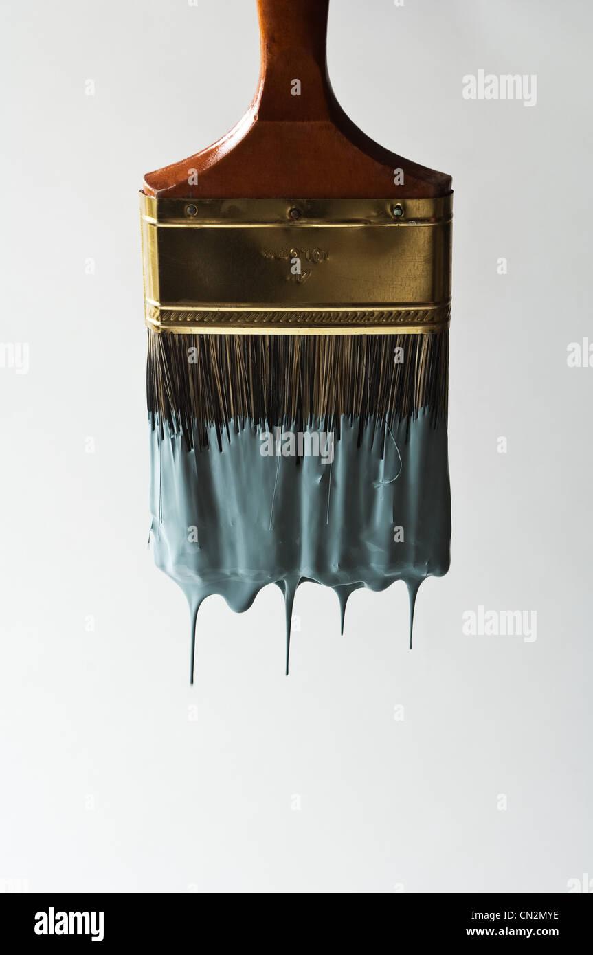 paintbrush stockfotos paintbrush bilder alamy. Black Bedroom Furniture Sets. Home Design Ideas