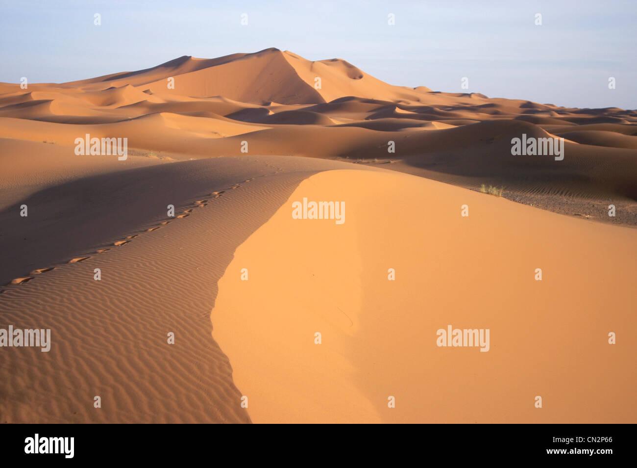 Fußabdrücke in der Wüste, Marokko, Nordafrika Stockbild