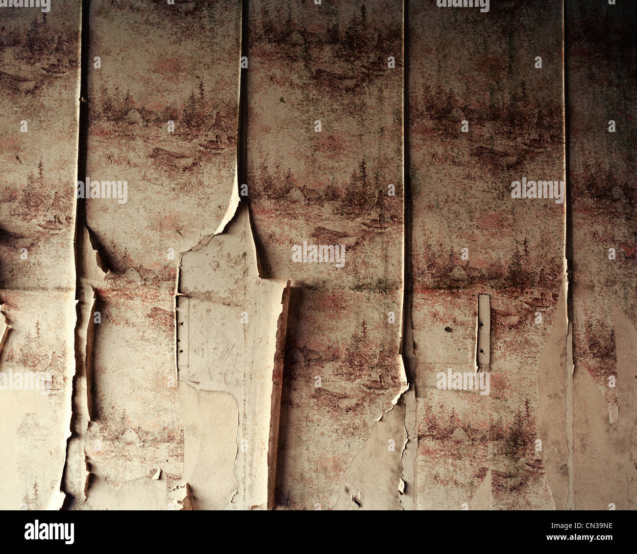 Abblätternde Tapete Stockbild