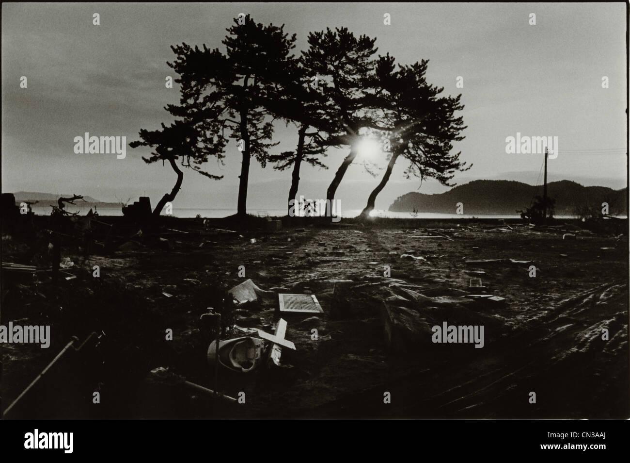 Sonnenlicht durch Silhouette Bäume und Geröll in Folge des 2011 Tohoku Erdbeben und Tsunami Stockfoto