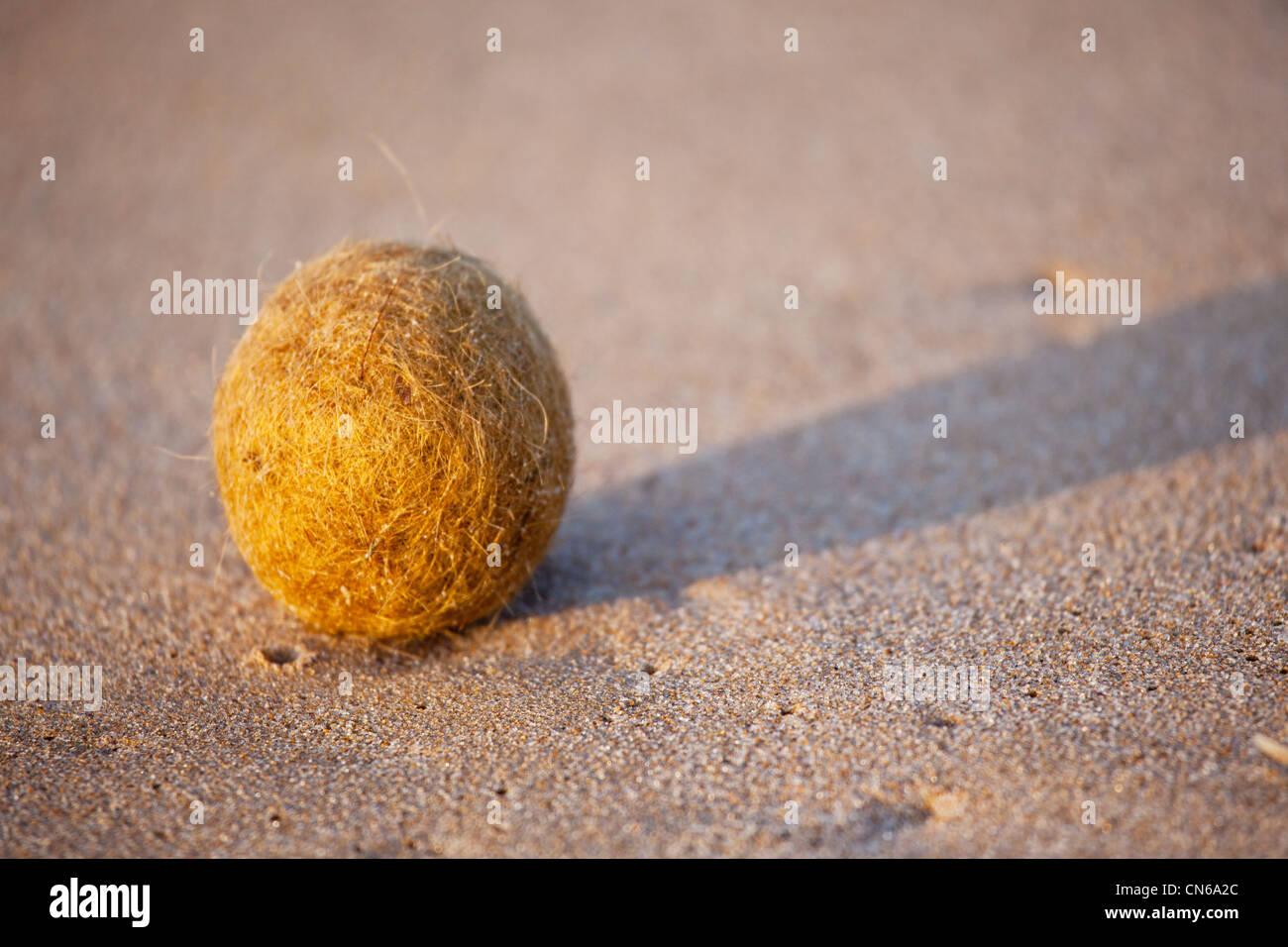 Kleine Kugel am Strand. Victor Harbour South Australia Stockbild